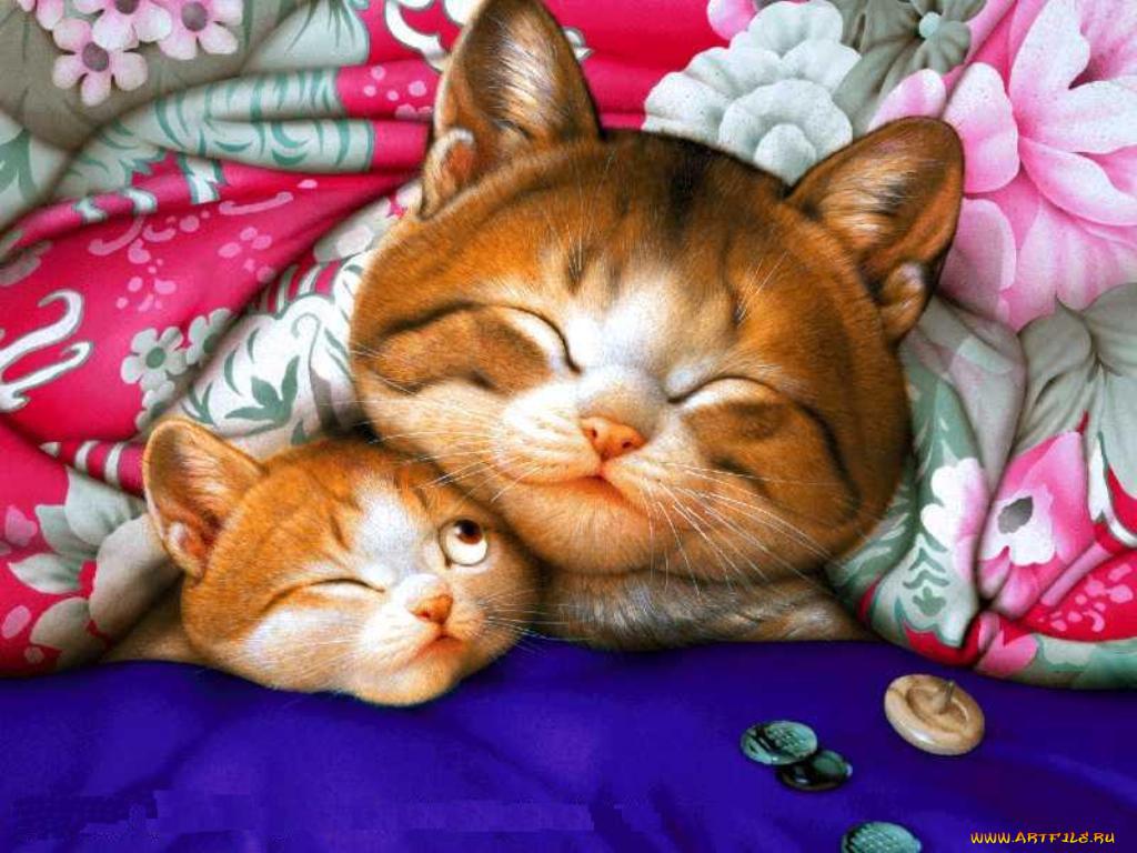 Доброй ночи картинки смешные с животными